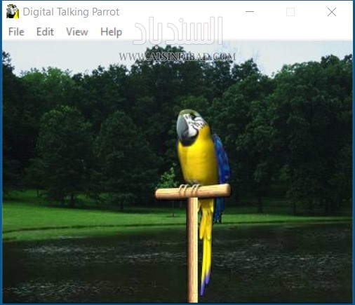 digital talking parrot